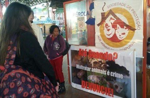 Pérola do Oeste em parceria com a Spag realizaram ação de conscientização na sexta feira (09)